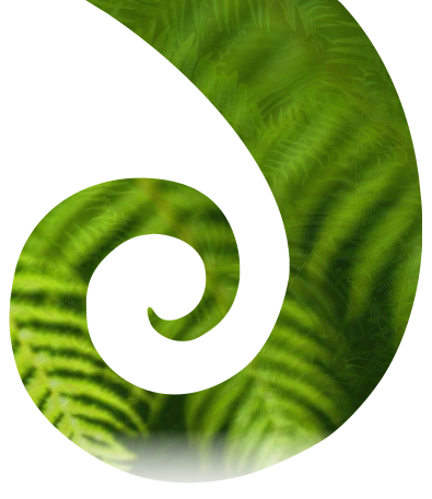 The koru symbolises new life, growth, strength and peace
